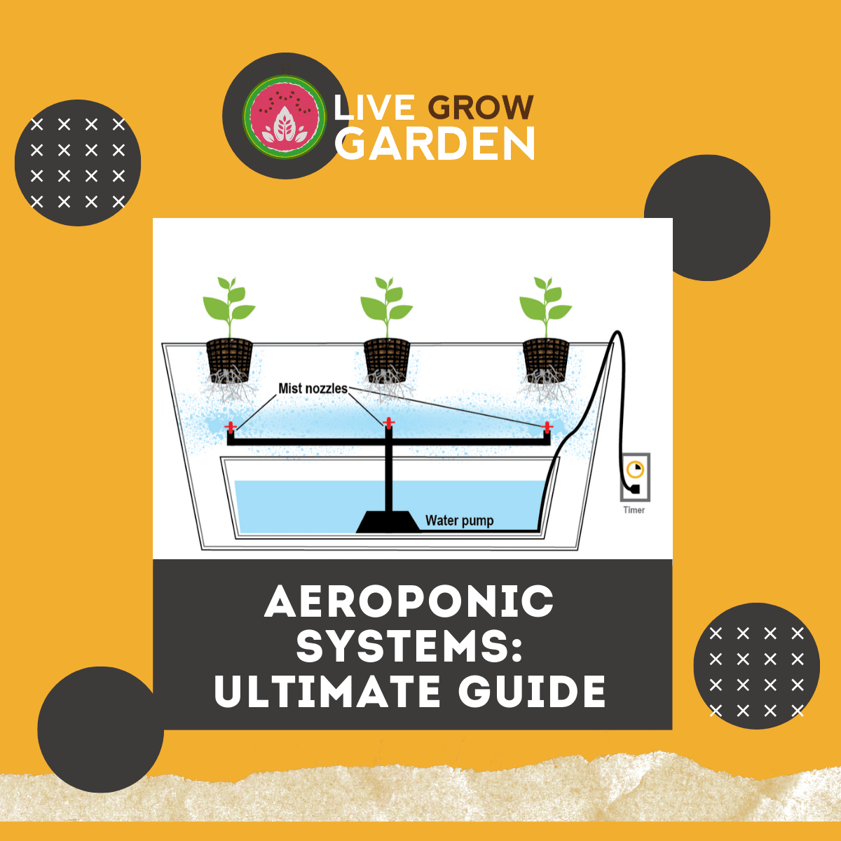 Aeroponic Systems Ultimate Guide